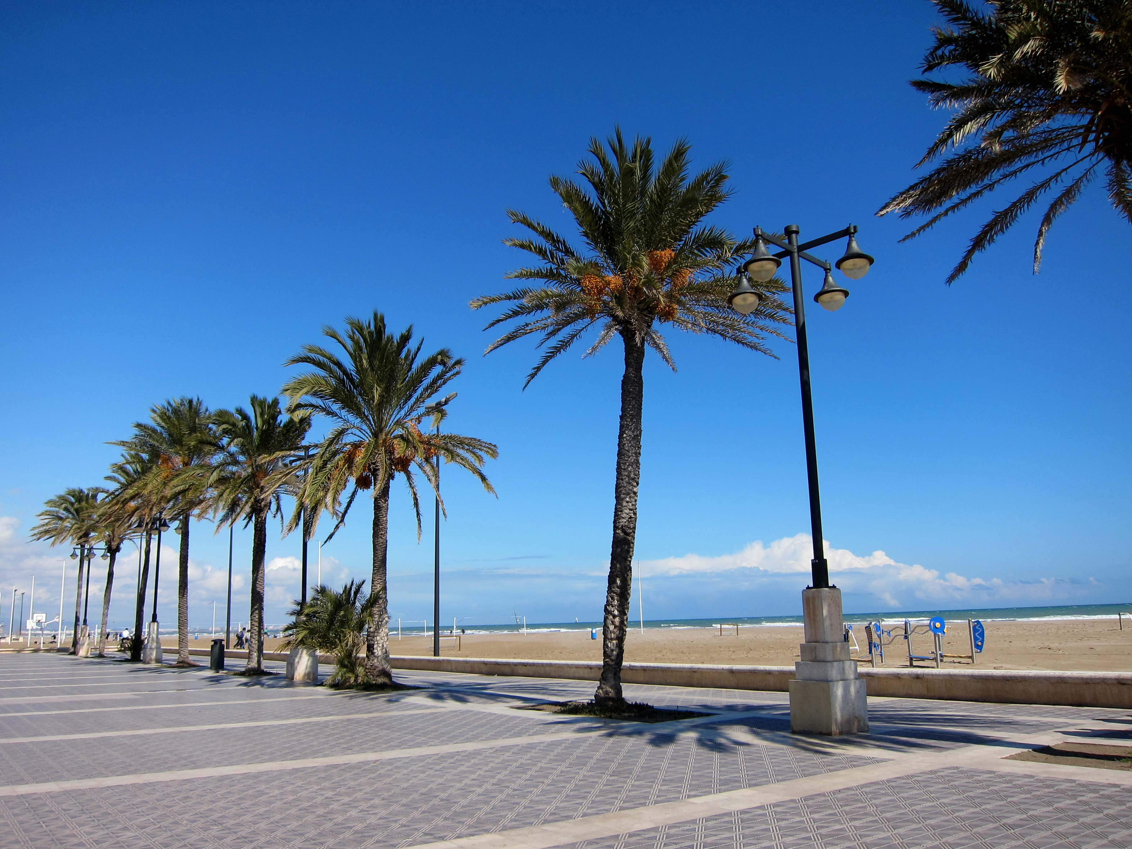 Strand Van Valencia Valencia Tips